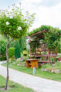 Градина пред Family Hotel Vega