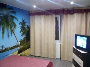 Телевизор и/или развлекательный центр в Apartment on Moskovskaya