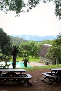 Piscine de l'établissement Mlilwane Wildlife Sanctuary ou située à proximité