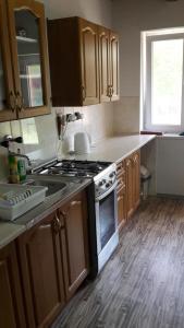 Kuchyň nebo kuchyňský kout v ubytování Chata Sovička Podhájska