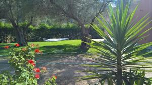 A garden outside Ionian Breeze Studios