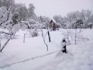 Cabañas Aliwen during the winter