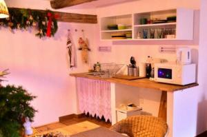 Kuchyň nebo kuchyňský kout v ubytování Apartmán U rybníka