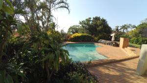 The swimming pool at or near Crooked Tree Cottage