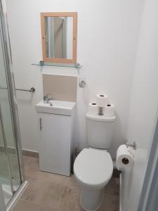 A bathroom at Kathleen House Plus