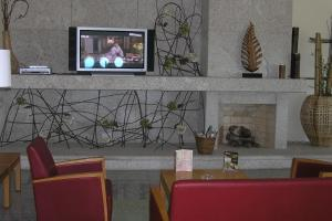 A television and/or entertainment center at Hotel Vanguarda Congress & Family