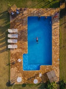 Uma vista da piscina em Parque Hotel Holambra ou nos arredores