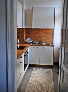Kuhinja oz. manjša kuhinja v nastanitvi Villa Winter Prestige Apartments