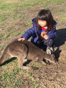 Children staying at Sunflowers Animal Farm & Farmstay