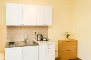 A kitchen or kitchenette at Apartments Radić