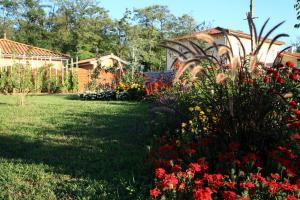 A garden outside Maison Addama