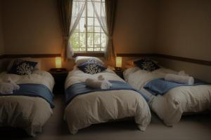 A bed or beds in a room at White Silver Hakuba