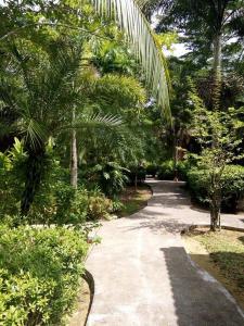 Aed väljaspool majutusasutust Sudala Beach Resort