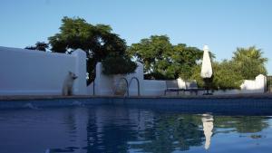The swimming pool at or near Cortijo El Guarda