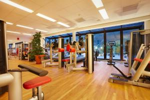 The fitness center and/or fitness facilities at Theresa Wellness-Genießer-Hotel