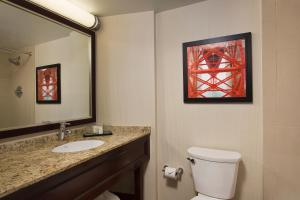 A bathroom at Embassy Suites San Francisco Airport - Waterfront