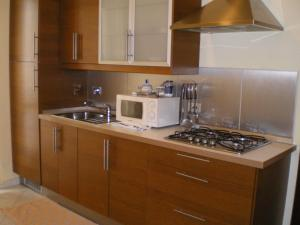 A kitchen or kitchenette at Lingotto