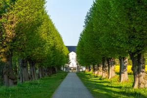 Ein Garten an der Unterkunft Schlossgut Gross Schwansee