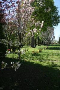 A garden outside Château du Clos Mortier