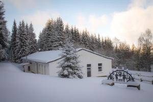 Erzgebirgsidyll Breitenbrunn Ferienwohnung during the winter