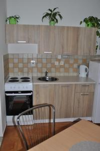 Kuchyň nebo kuchyňský kout v ubytování Privát Magdalena