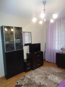 Телевизор и/или развлекательный центр в Apartment on Vavilovykh