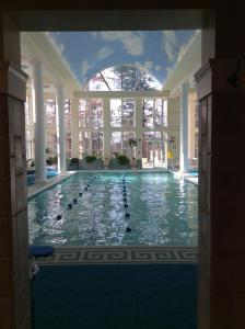 The swimming pool at or near Senator Inn & Spa