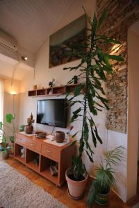 A television and/or entertainment center at Magic Apartment