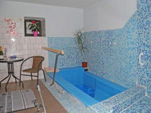 Bazén v ubytování Pension Lípa nebo v jeho okolí