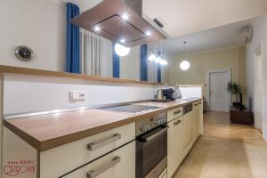 Een keuken of kitchenette bij Rezidence Ostrovní
