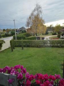 Giardino di Casa Zanier Cigolotti