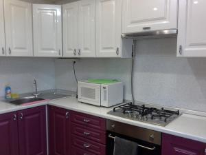 A kitchen or kitchenette at Apartment on Konstantina Ivanova 91