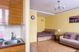 Кухня или мини-кухня в Apartment Na Chistyh prudah