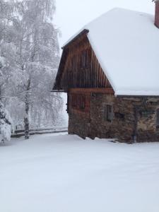 Apartments im Almhaus Bachler im Winter