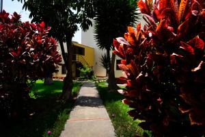 A garden outside Residencial Sori
