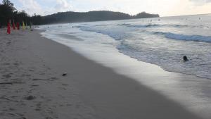 A beach at or near the lodge