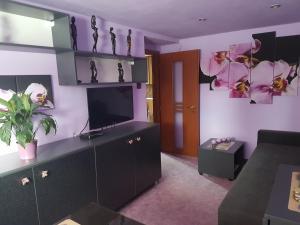 Televízia a/alebo spoločenská miestnosť v ubytovaní Apartment Alta