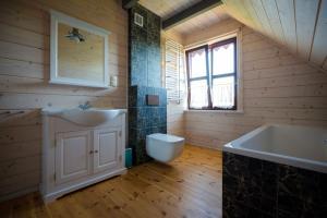 Łazienka w obiekcie Log House Mazury Brajniki