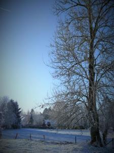 L'établissement Le Gîte du Chêne Rouvre en hiver