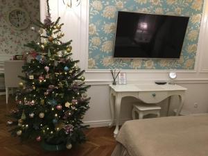 Telewizja i/lub zestaw kina domowego w obiekcie Blueberry Apartments