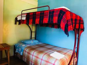 A bunk bed or bunk beds in a room at Hostal Princesa Maria