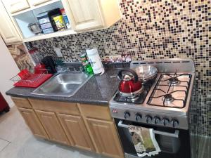 A kitchen or kitchenette at Studio, One and Two Bedroom Apartments - Bronx