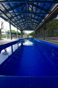 The swimming pool at or close to Daintree Peaks ECO Stays