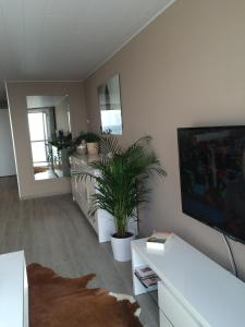 A television and/or entertainment centre at Nieuwpoort zicht op zee