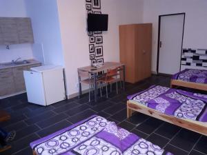 TV a/nebo společenská místnost v ubytování Beta House Litvinov