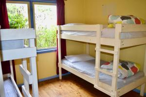 A bunk bed or bunk beds in a room at Apollo Bay Backpackers
