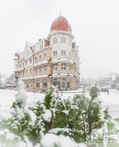 L'établissement Grand Hotel Belle Vue en hiver