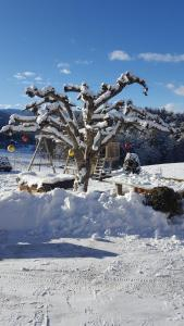 Hölzlhof during the winter