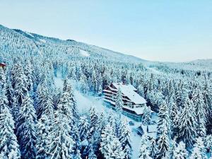 Клуб Хотел Янакиев през зимата