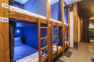 A bunk bed or bunk beds in a room at Green Hill Bed Station